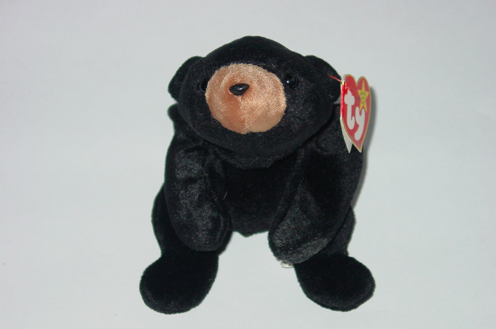 223f18764bf Ty Beanie Baby Blackie Bear Beanbag Plush and 50 similar items. kgrhqvhjcme  iwd7j bqzk3yh zg 60 57