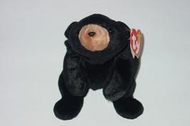 TY BEANIE BABY BLACKIE BEAR Beanbag plush Original TAG 1993 4011  5TH GE... - $10.00