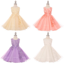 Raised Satin Flowers and Beads on Bodice with Glitter Tulle Skirt Girl D... - $58.99