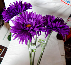"Fall Christmas Decor Picks Stems Flowers Spider Daisy Ashland 6ea 29"" x ... - $7.87"
