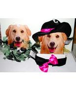 Ruffled Collars Dog Dress up Costumes 2ea Hat & Necktie Spider Web Med/L... - $7.89