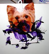 Halloween Ruffled Collar Purple Celebrate It Bats XS small Dog 2 to 6 lbs 44Y - $4.92