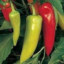 150 Organic Hungarian Hot Wax Banana Pepper Seeds Heirloom - $1.79