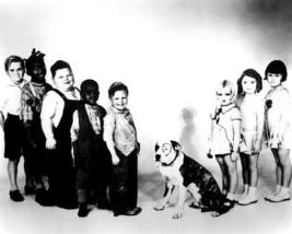 Little Rascals Our Gang 8H Dog Vintage 8X10 BW TV Memorabilia Photo - $6.99