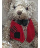 Hallmark Mr Bear Stuffed bear Christmas Holiday - $27.00