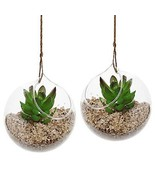 Hanging Air Plant Terrarium Planter Decorative ... - £28.63 GBP