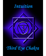 REIKI THIRD EYE 6TH CHAKRA BALANCING FROM A DISTANCE CLEARING & HEALING ... - $22.22