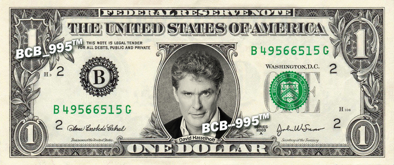 Primary image for DAVID HASSELHOFF on REAL Dollar Bill - Collectible Celebrity Cash Money Art