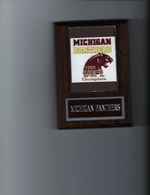 Michigan Panthers Plaque Football Usfl Champs Champions - $3.95