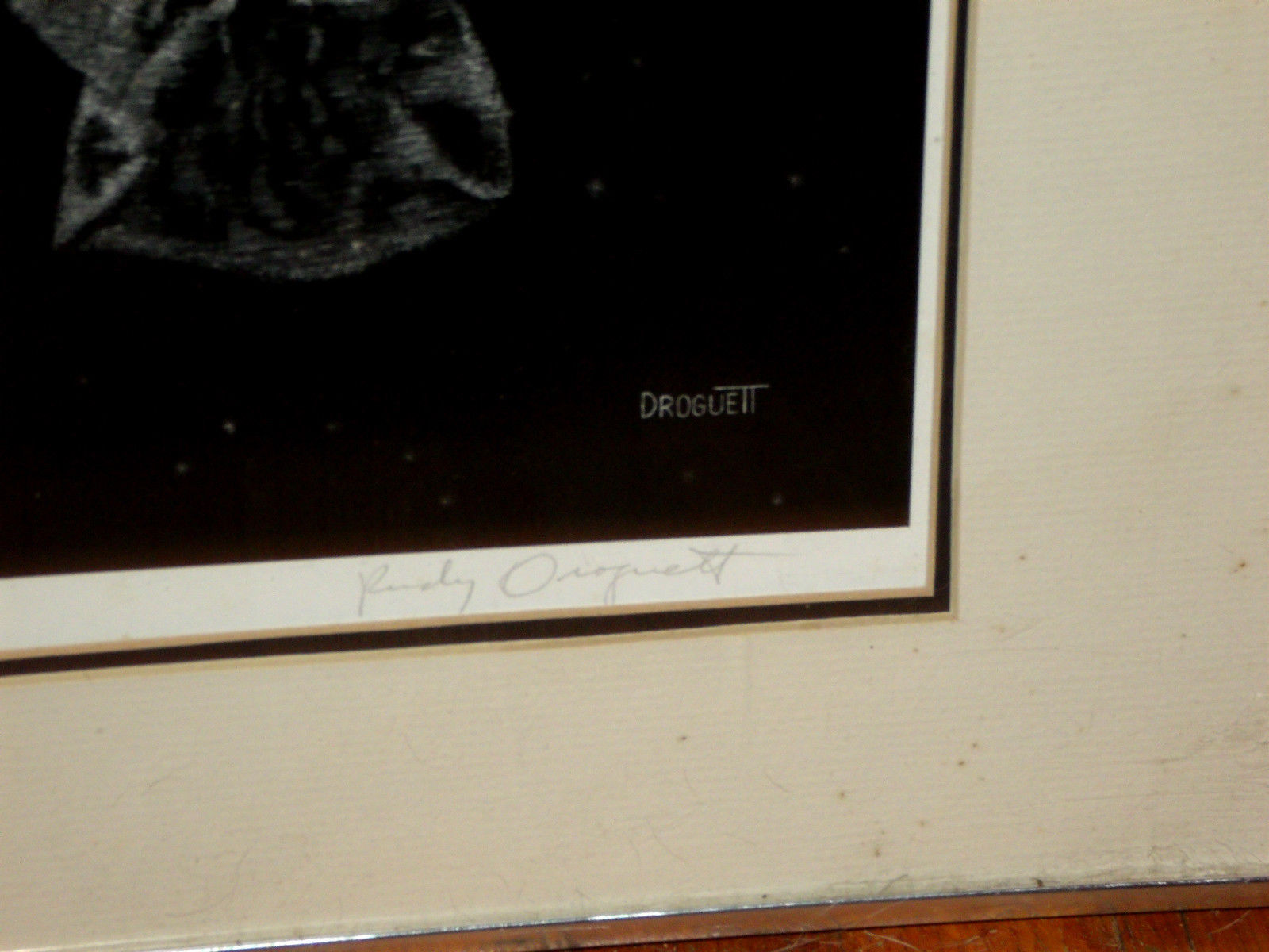 REFLECTIONS SIGNED BY RUDY DROGUETT FRAMED CAT PRINT