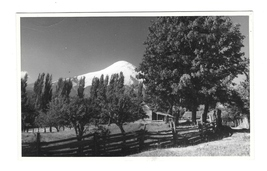 Chile South America Log Cabin Mountains 1950 Real Photo No Postcard Format - $6.69