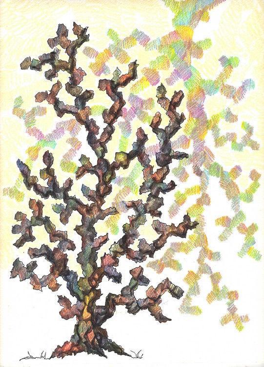 Akimova: TREE, abstract, watercolor pencils