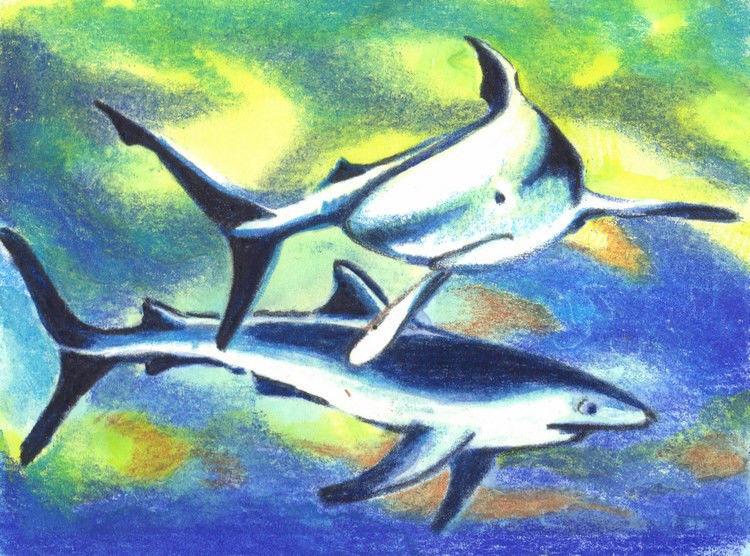 "Akimova: SHARKS, watercolor, 3.75""x2.75"", green, blue,sea animal"