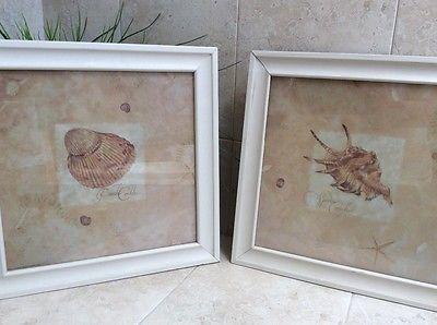 Wall Art Print Coastal Design Sea Shells Framed Set of Two, Medium Size