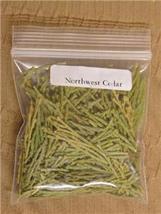 Flat Cedar ~ Incense Cedar - $2.00