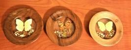 DECORACOES ROSAS made in Brazil wall decor Set of 3 Butterflies & Flower... - $24.74