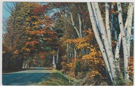 Memoquisit Lodge Monetville Ontario Postcard - $6.95