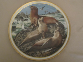 Sea Lions Collector Plate Norman Adams American Wildlife Lenox Seal - $40.00