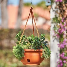 Set of 2 Self Watering Hanging Planters Baskets Outdoor Planting 4 Colors - $75.59 CAD
