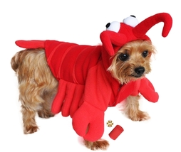 Plush Red Lobster Padded Costume with Accessories - for Dogs - Sizes XS ... - $30.98+