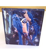 Blue Parrots on Tile with easel handmade - $5.94