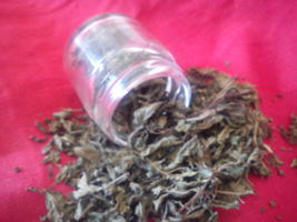 Greek Dried peppermint herb Druid sacred ancient Greek myth hoarse throa... - $5.99