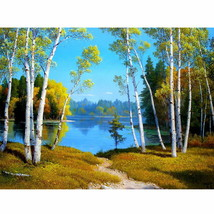 PaintingStyle RA3323 CHUNXIA Framed DIY Painting By Numbers Landscape Ac... - $7.40