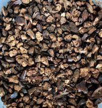 Barley Herbal Infusion - $6.00+