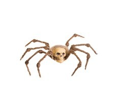 "Allstate 10"" Creepy Brown Spider Skull with Hair Halloween Decoration - $174,12 MXN"