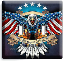 BALD EAGLE AMERICAN FLAG WINGS 2 GANG LIGHT SWITCH COVER WALL PLATES ROO... - $11.69