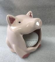 Pig scrubby 5 thumb200