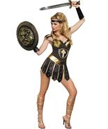 Queen of Sword Warrior Costume - $19.99