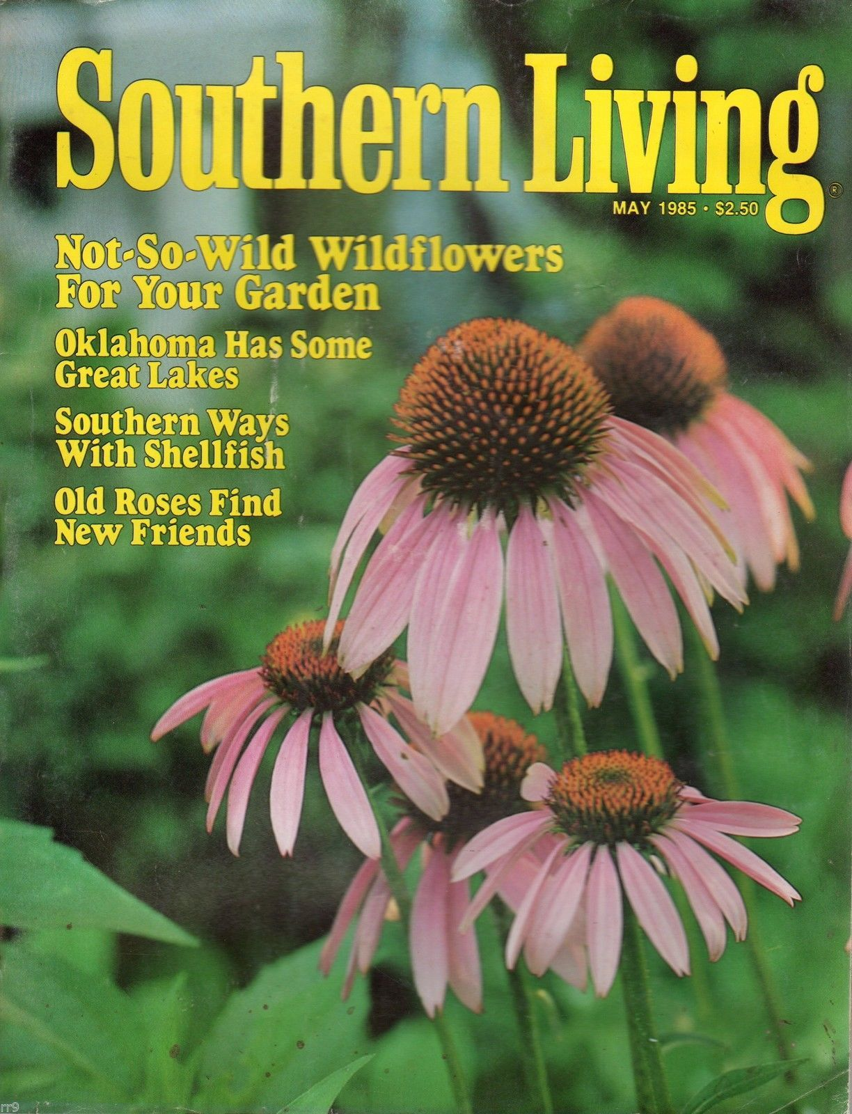 Primary image for Southern Living Magazine May 1985