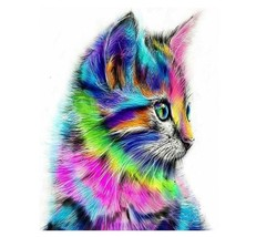 Paint By Numbers Kit Colorful Cat Animals Rainbow Kitty 40CMx50CM Canvas - $13.86