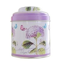 Kylin Express Unique Style Double-Deck Lids Tin Tea Canister Tea Storage Contain - $14.49