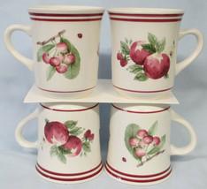 Pfaltzgraff Delicious Mug Set of 4 - $35.53