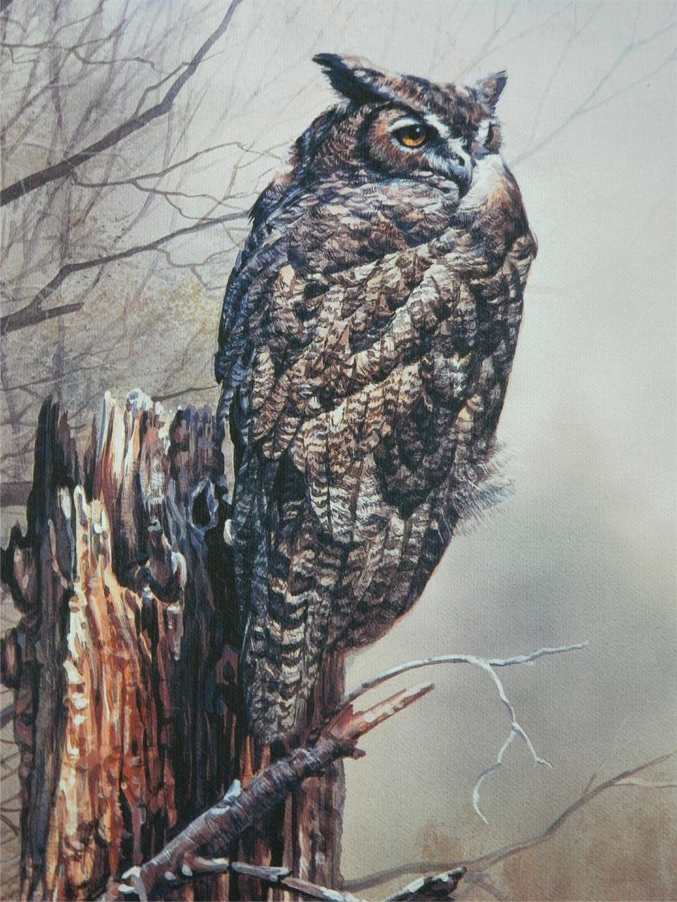 Great Horned Owl Bird Art Made in USA Canvas Giclee Gallery Wrapped Print NIB