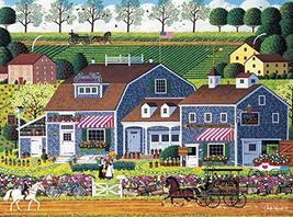 Buffalo Games - Charles Wysocki - Prairie Wind Flowers - 1000 Piece Jigsaw Puzzl - $17.99