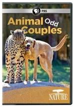 Nature - Nature: Animal Odd Couples [New DVD] - $19.60