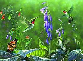 Buffalo Games - Hautman Brothers - Hummingbirds and Hosta  - 1000 Piece Jigsaw P - $70.00