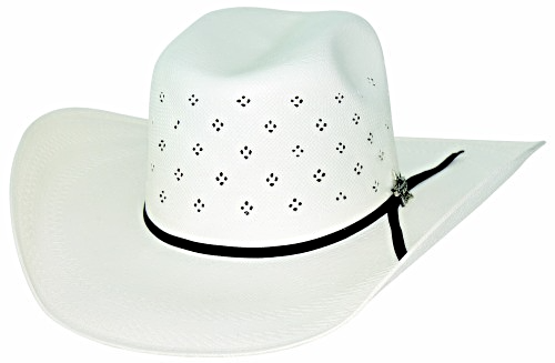 Primary image for Bullhide PBR Something Magical 100X Shantung Panama Straw Cowboy Hat Natural