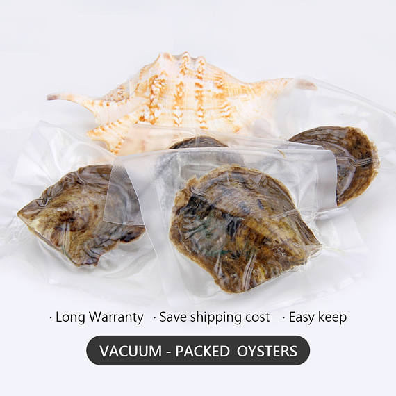 Pearl Oyster Copper Orange Akoya Oyster Pearl Packed 6-7mm 10 / 20 / 30 pcs