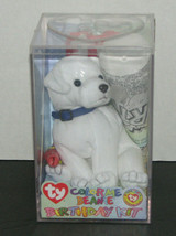 Ty Color Me Beanie Birthday Kit Puppy Dog NEW - $18.98