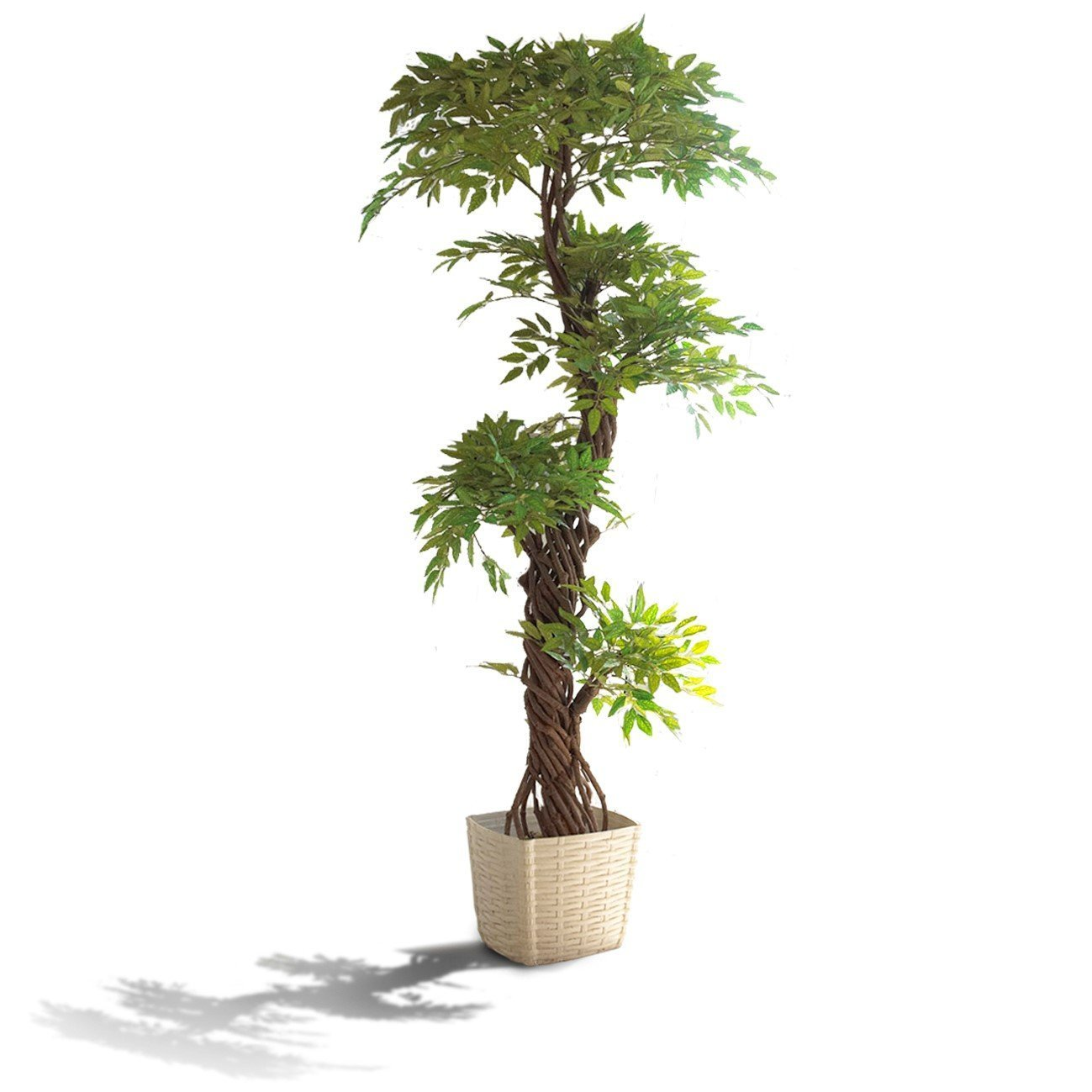 Artificial Trees Plants: Faux Contemporary Artificial Plants And Trees, Luxury