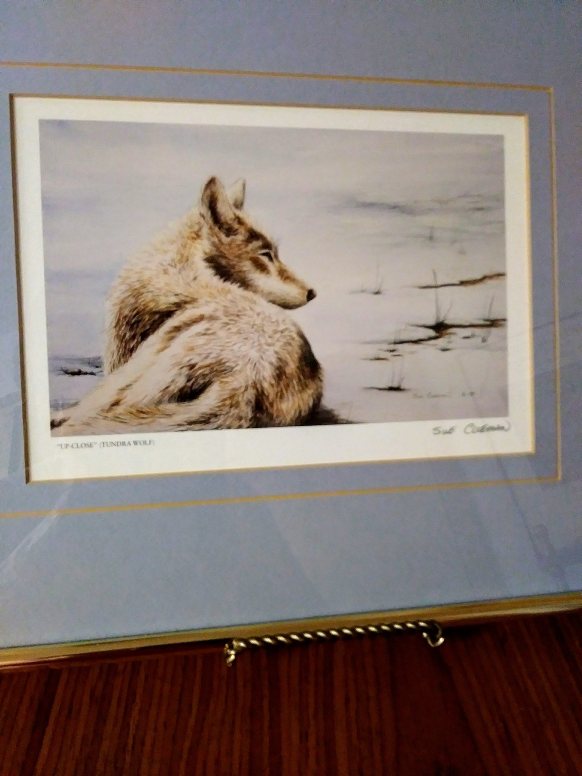 Up Close (Tundra Wolf)  Sue Coleman 1988 Art Work Print Framed Matted Gold Frame