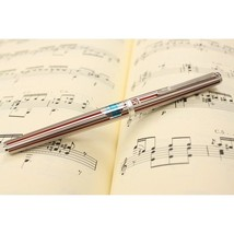 Platinum Riviere Stripe Fountain Pen from Japan - $82.28