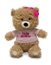 """Cuddle Barn - Big Sister  Bear """"Precious Big Sister Encouragements"""" - $18.47"""