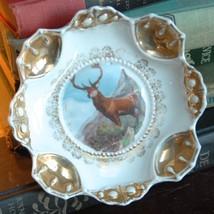 ANTIQUE BOWL PORCELAIN BUCK STEER DEER HUNTING WILDLIFE ROCKIES GOLD GIL... - $39.99