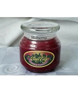 SALT CITY CANDLES Intense Fragrance Mulberry Jar Candle NEW Rare - $46.50
