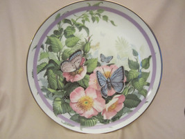 COMMON BLUE collector plate BUTTERFLY GARDEN Paul Sweany BEAUTIFUL - $19.99